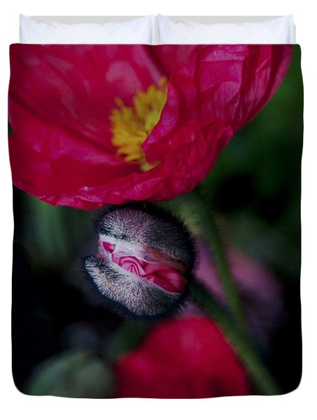 Duvet Cover featuring the photograph Flower Bud by Haleh Mahbod