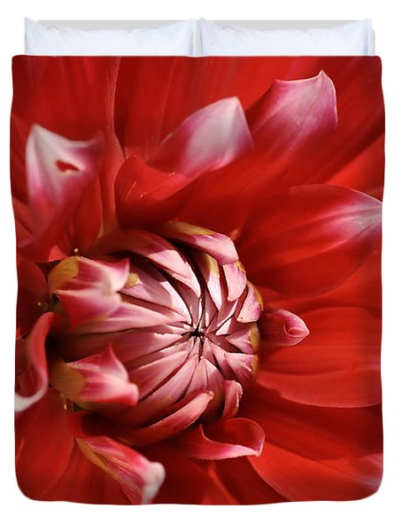 Flower- Dahlia-red-white Duvet Cover
