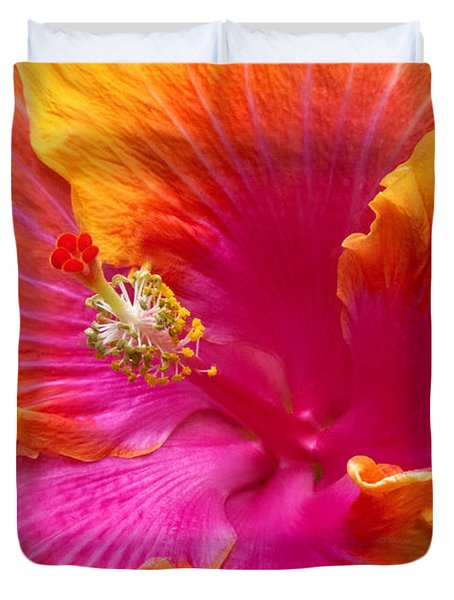 Flower - Hibiscus Rosa-sinesis - Chinese Hibiscus - Appreciation Duvet Cover by Mike Savad