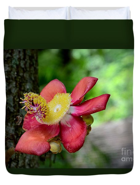 Flower Of Cannonball Tree Singapore Duvet Cover