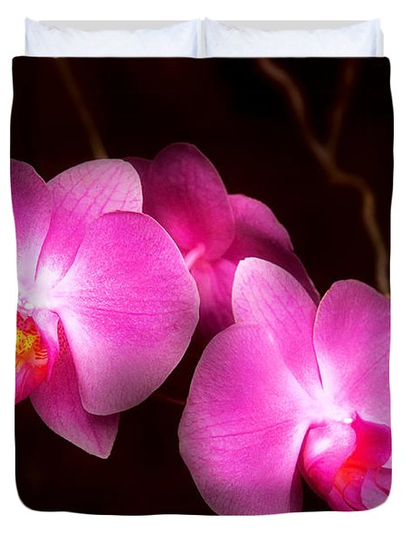 Flower - Orchid - Better In A Set Duvet Cover by Mike Savad