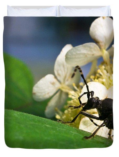 Flower Rise Over Beetle Duvet Cover