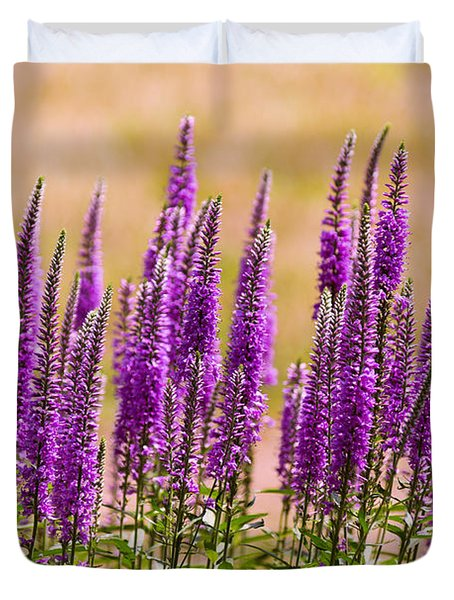 Flower - Speedwell Figwort Family - I Dream Of Lavender  Duvet Cover by Mike Savad