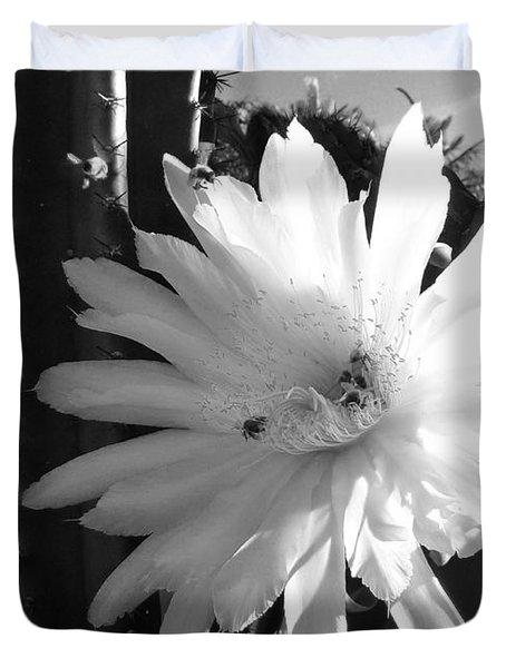 Flowering Cactus 1 Bw Duvet Cover