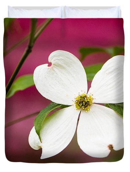 Flowering Dogwood Blossoms Duvet Cover by Oscar Gutierrez