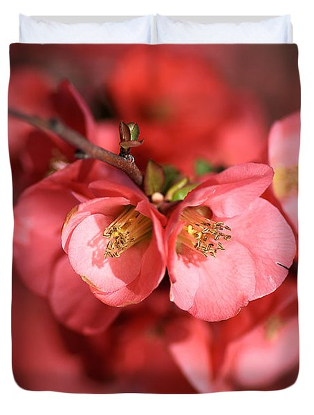 Flowering Quince Duvet Cover by Joy Watson