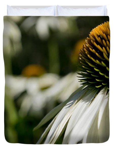 Flowers - Echinacea White Swan Duvet Cover