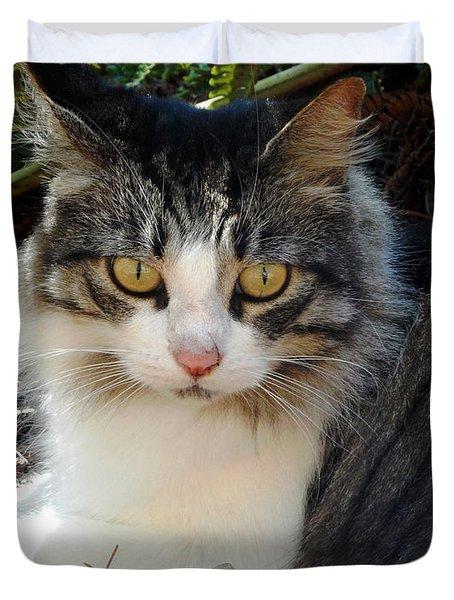 Fluffy Cat Duvet Cover by Pamela Walton
