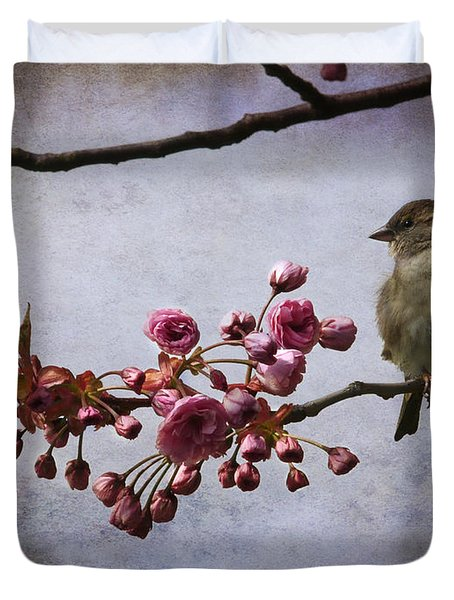 Fluffy Sparrow  Duvet Cover by Barbara Orenya