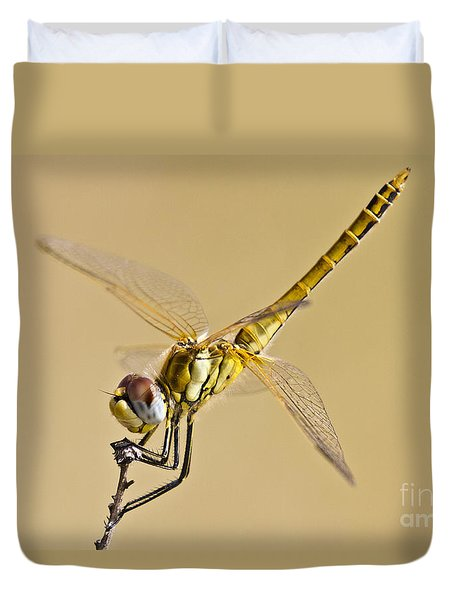 Fly Dragon Fly Duvet Cover by Heiko Koehrer-Wagner