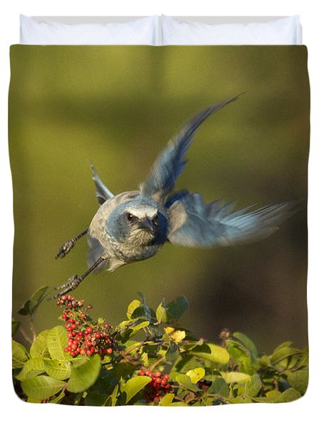 Flying Florida Scrub Jay Photo Duvet Cover