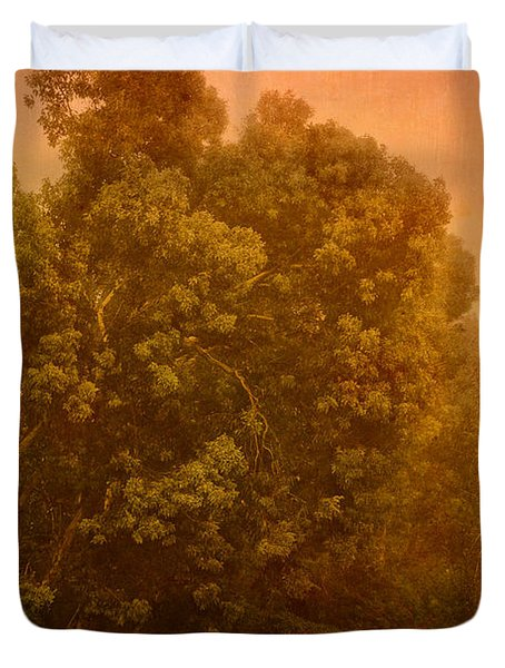 Foggy Drizzly City Morning Duvet Cover by Angela A Stanton