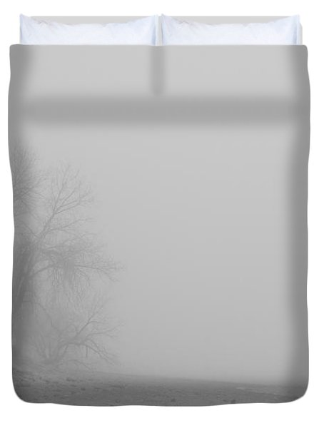 Foggy Lake Shoreline View Bw  Duvet Cover by James BO  Insogna