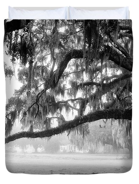 Foggy Morning On Coosaw Plantation Duvet Cover