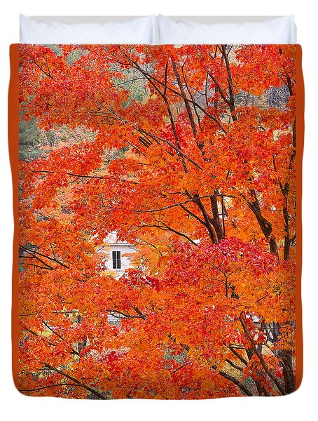 Foliage Window Duvet Cover by Alan L Graham