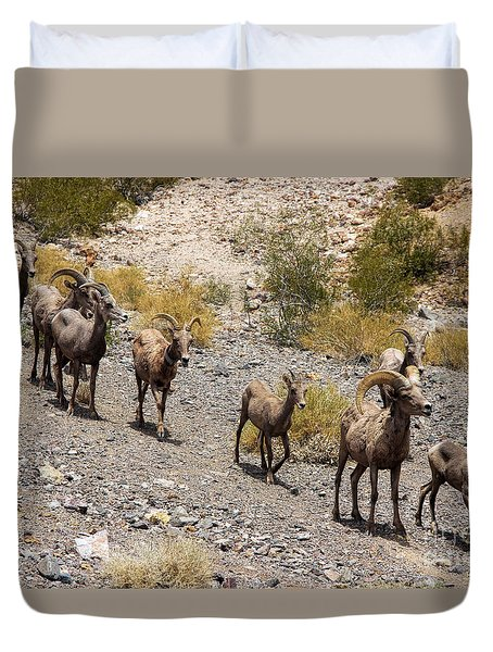 Follow The Leader Duvet Cover by Tammy Espino