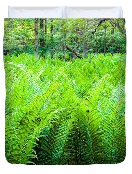 Forest Ferns   Duvet Cover