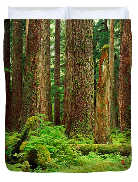 Forest Floor Olympic National Park Wa Duvet Cover