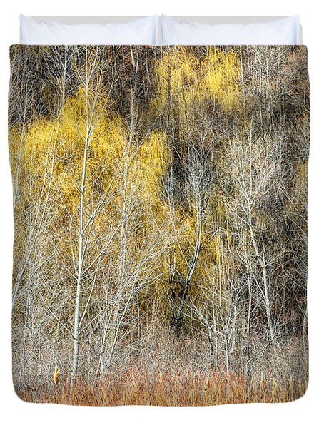 Forest In Late Fall At Scarborough Bluffs Duvet Cover by Elena Elisseeva