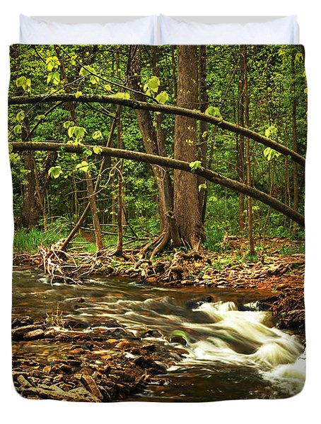 Forest River Duvet Cover by Elena Elisseeva