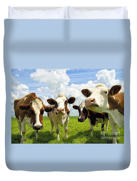 Four Chatting Cows Duvet Cover