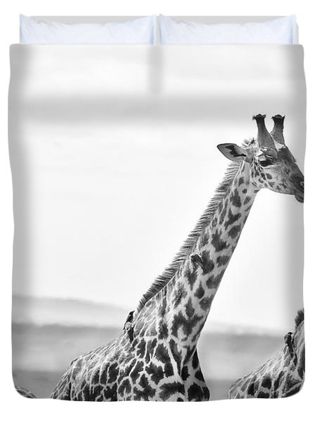 Four Giraffes Duvet Cover by Adam Romanowicz