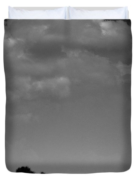 Four Palms Duvet Cover by Bradley R Youngberg