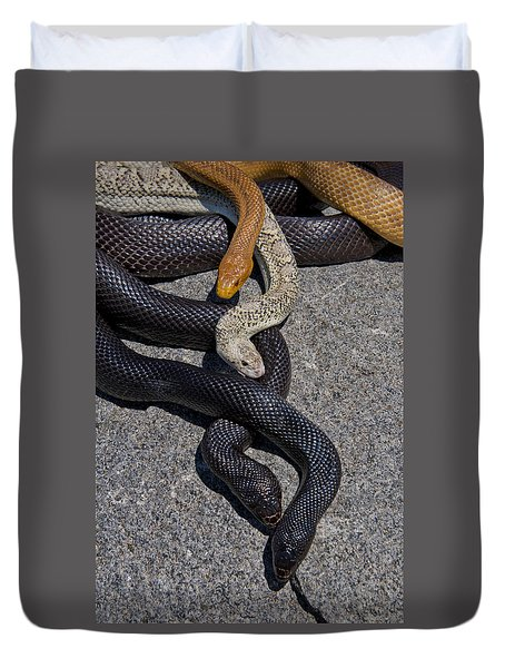 Four Snakes Duvet Cover