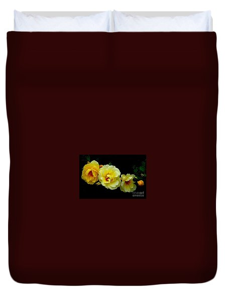 Duvet Cover featuring the photograph Four Stages Of Bloom Of A Yellow Rose by Janette Boyd