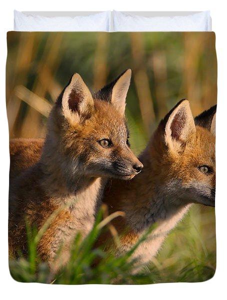 Fox Cubs At Sunrise Duvet Cover