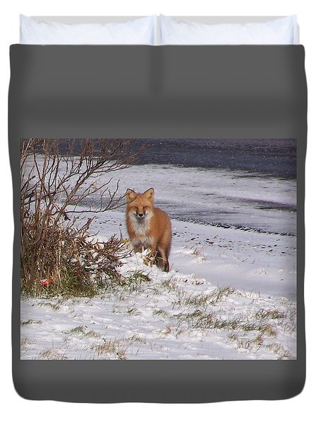Fox In My Yard Duvet Cover