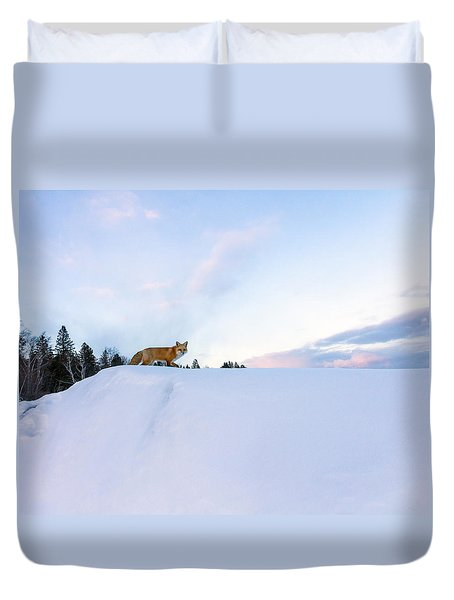 Fox Of The North IIi Duvet Cover by Mary Amerman