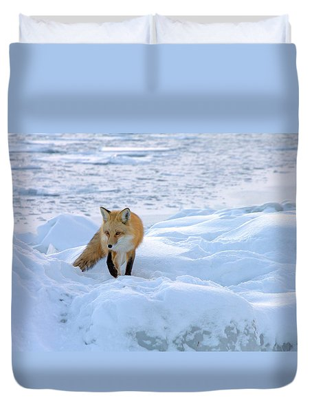 Fox Of The North II Duvet Cover by Mary Amerman