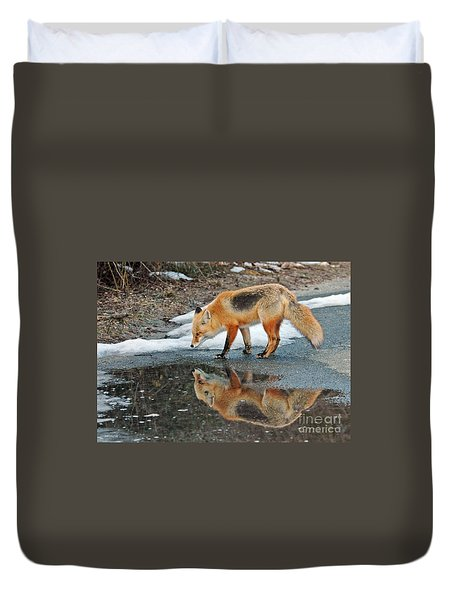 Fox Reflection Duvet Cover by Sami Martin