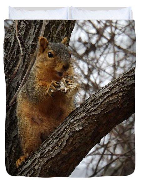 Fox Squirrel 1 Duvet Cover by Sara  Raber