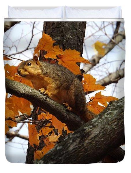 Fox Squirrel In Autumn Duvet Cover by Sara  Raber