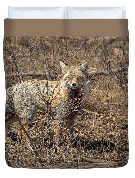 Foxy In Disguise Duvet Cover by Yeates Photography