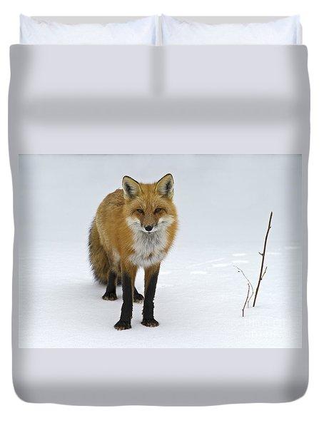 Foxy.. Duvet Cover