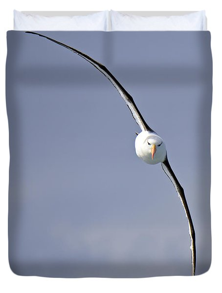 Free To Follow Duvet Cover by Tony Beck