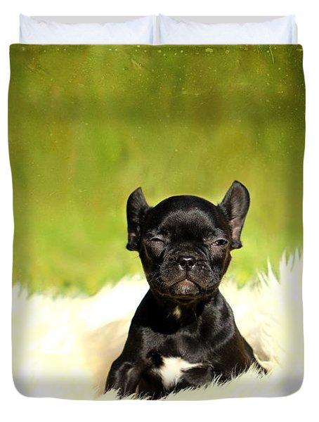 French Bulldoggs Duvet Cover