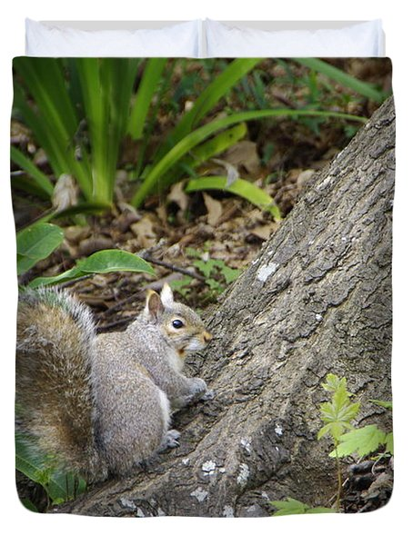 Duvet Cover featuring the photograph Friendly Squirrel by Marilyn Wilson