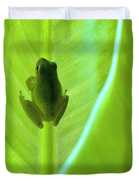 Duvet Cover featuring the photograph Frog In Blankie by Faith Williams