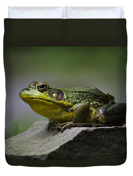 Frog Outcrop Duvet Cover by Christina Rollo
