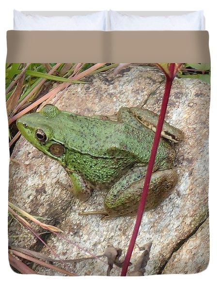 Duvet Cover featuring the photograph Frog by Robert Nickologianis
