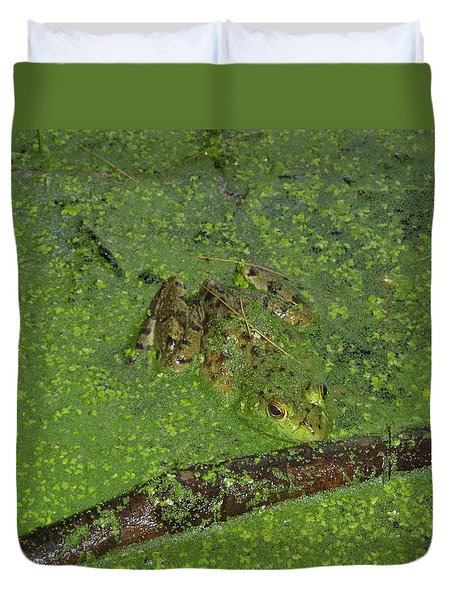 Duvet Cover featuring the photograph Froggie by Robert Nickologianis