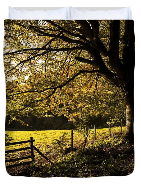 From Woods To Fields Duvet Cover by Anne Gilbert