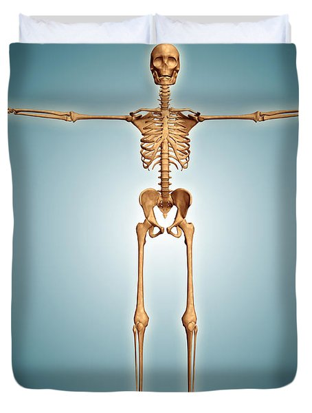Front View Of Human Skeletal System Duvet Cover by Stocktrek Images