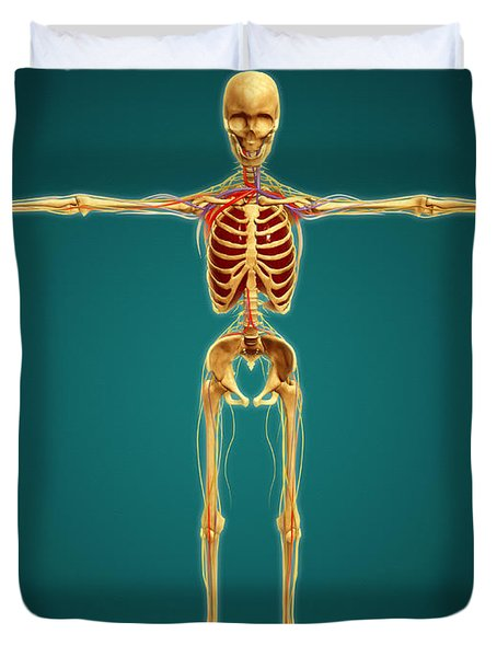 Front View Of Human Skeleton Duvet Cover by Stocktrek Images