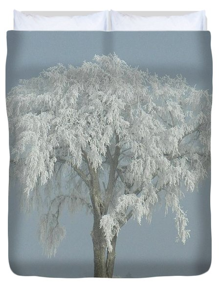 Frost Covered Lone Tree Duvet Cover