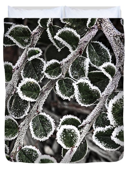 Frost On Plant Branch In Late Fall Duvet Cover